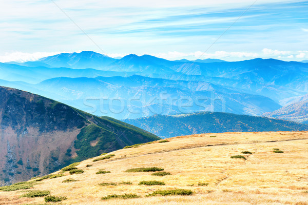 Mountains landscape with field of grass Stock photo © vapi