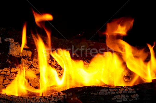 Płomień porady drewno opałowe tekstury streszczenie charakter Zdjęcia stock © vapi