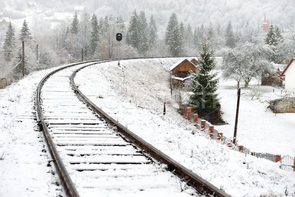 Kolej żelazna śniegu zimą krajobraz pusty kolej Zdjęcia stock © vapi