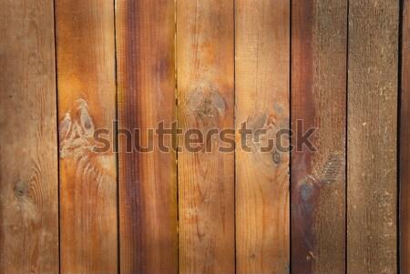 Textura pueden utilizado abeto madera Foto stock © vapi