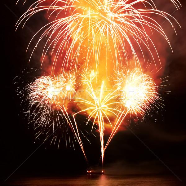 Colorido fogos de artifício preto céu água fogo Foto stock © vapi