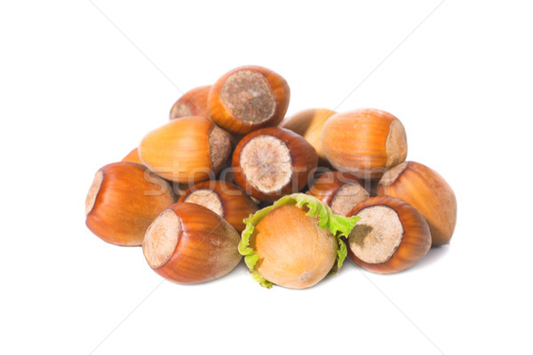 Nuts with green leaf Stock photo © vapi