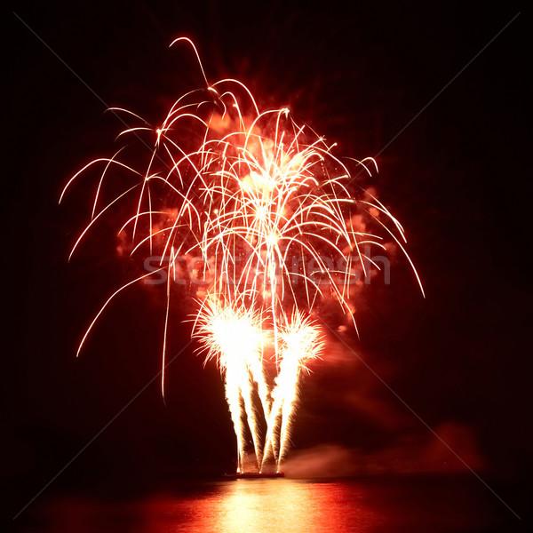 Színes tűzijáték fekete égbolt víz fény Stock fotó © vapi