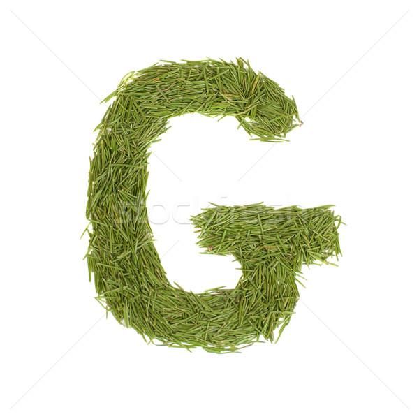 Green alphabet, letter G Stock photo © vapi