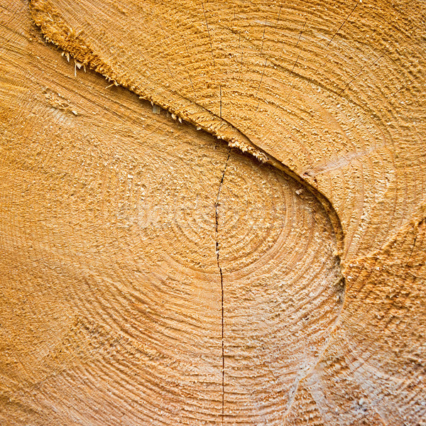 Light yellow cracked wooden texture Stock photo © vapi