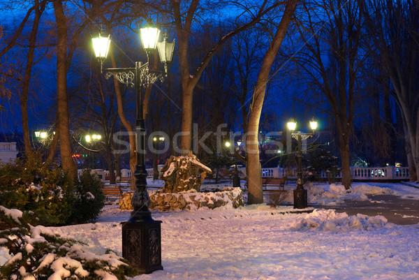 市泊 シーン ライト 雪 ツリー 春 ストックフォト © vapi