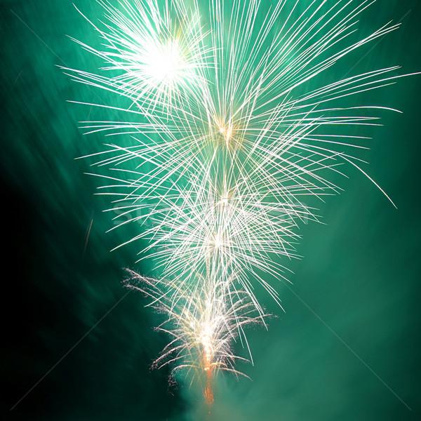 Salute, fireworks. Stock photo © vapi