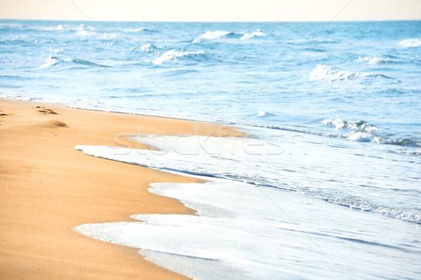 Long beach kum deniz su plaj gökyüzü Stok fotoğraf © vapi