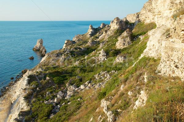海岸線 多くの ビッグ 岩 ビーチ 水 ストックフォト © vapi