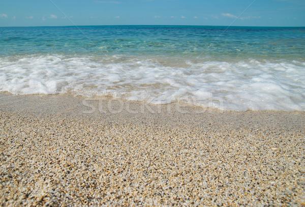 Stock photo: Tropical sand beach