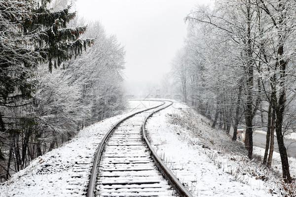 Ferrovia neve inverno paisagem vazio trilho Foto stock © vapi