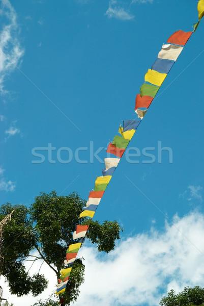 Tibetan flags Stock photo © vapi