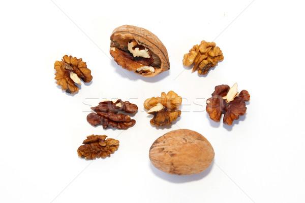 A walnuts isolated on white. Stock photo © vapi