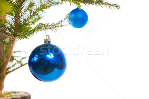 Blau Urlaub Kugeln Weihnachtsbaum isoliert weiß Stock foto © vapi
