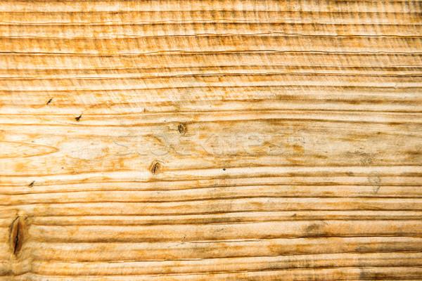 öreg fából készült textúra tölgy fa természet Stock fotó © vapi