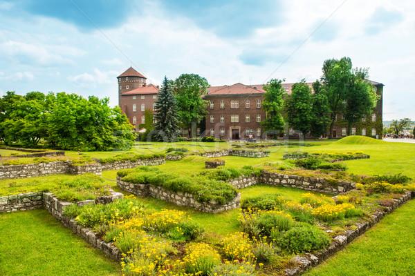 Catedral cracovia Polonia verde césped edificio Foto stock © vapi