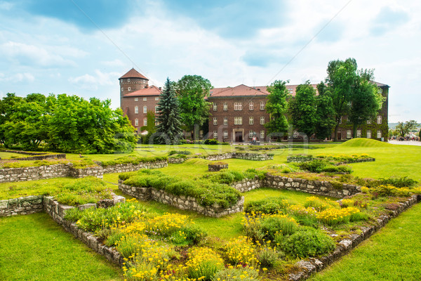 Katedral krakow Polonya yeşil çim Bina Stok fotoğraf © vapi
