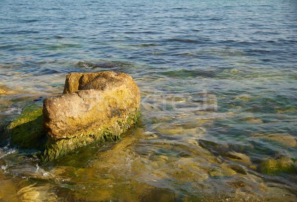 Groot steen groene mariene water natuur Stockfoto © vapi