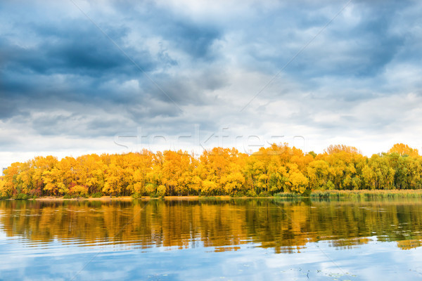 Autumn forest on river bank Stock photo © vapi