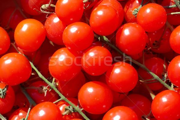 Rosso pomodori può natura foglia giardino Foto d'archivio © vapi