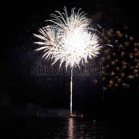 White fireworks Stock photo © vapi