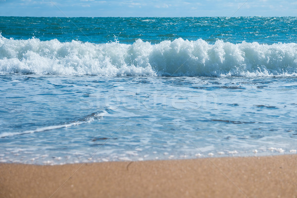 Blue sea and beach with golden sand Stock photo © vapi