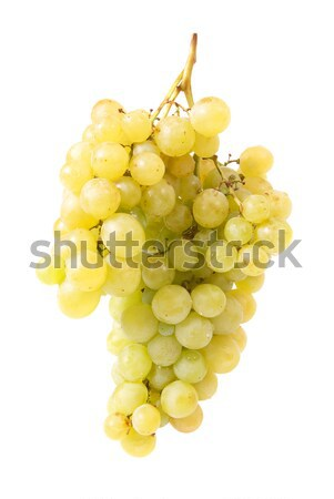 Bunch of grapes Stock photo © vapi