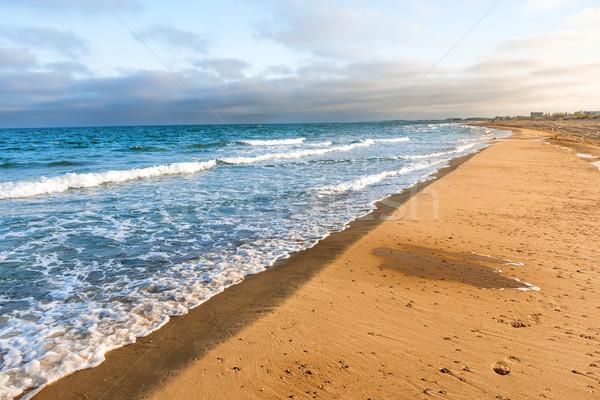 Lang tropische zandstrand surfen zee golven Stockfoto © vapi