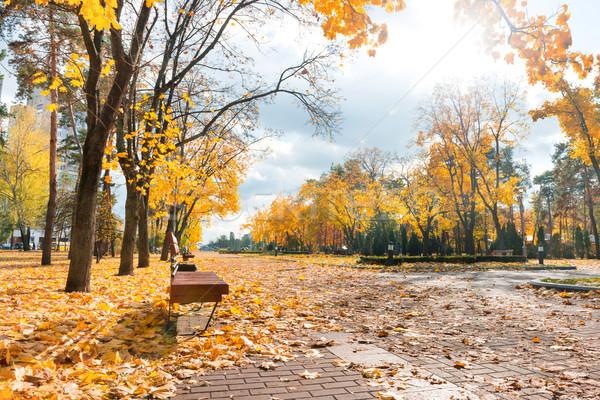 Geçit sonbahar şehir park turuncu yaprakları Stok fotoğraf © vapi