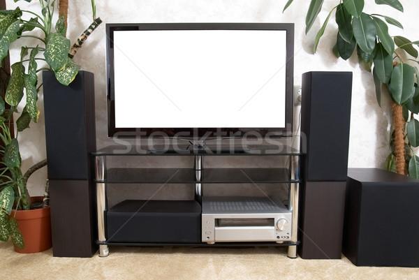 Otthon színház plazma tv hifi ház Stock fotó © vapi