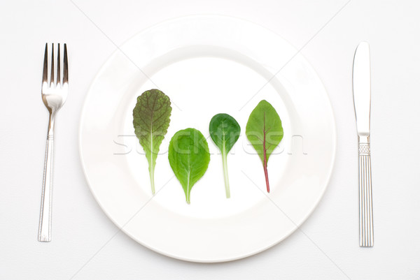 Salad leaf on the plate Stock photo © varts