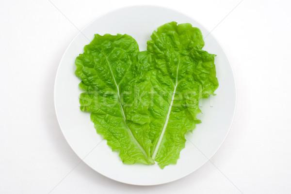 Lettuce Stock photo © varts