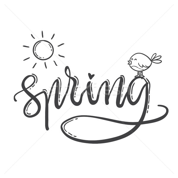 Hand drawn lettering spring. Sun and bird Stock photo © vasilixa