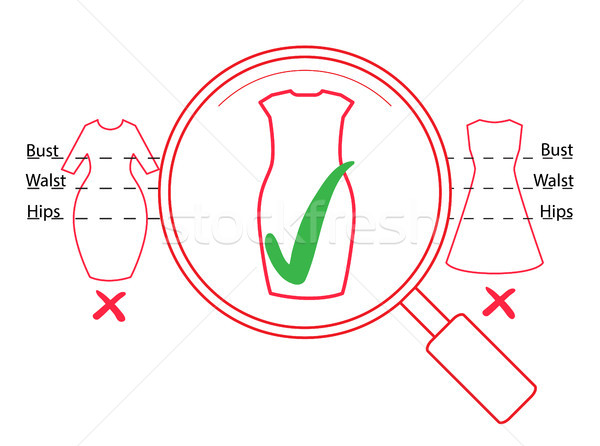 Dresses outline illustration with check marks and magnifier. Vector fashion infographic with green t Stock photo © vasilixa