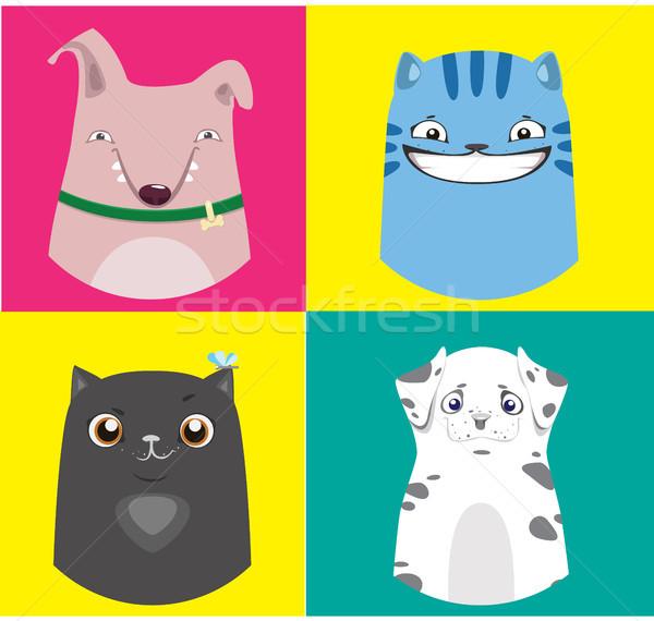 Desenho animado cães gatos coleção vetor colorido Foto stock © vasilixa