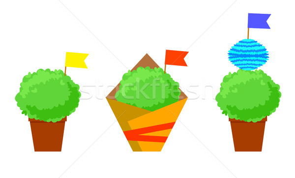 Manjerico isolated plants with flags. Santos Populares festival symbol. Stock photo © vasilixa