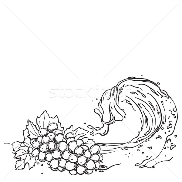 Grapes on wave juice. hand drawn sketch illustration Stock photo © vasilixa