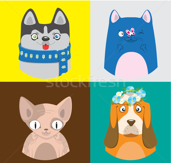 красочный Cartoon кошек собаки коллекция вектора Сток-фото © vasilixa