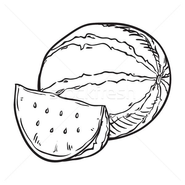 hand drawn sketch watermelon illustration Stock photo © vasilixa