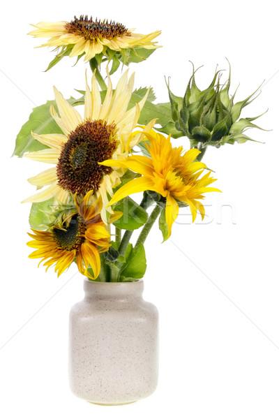 Stock photo: minimalistic  bouquet  - mini yellow sunflowers