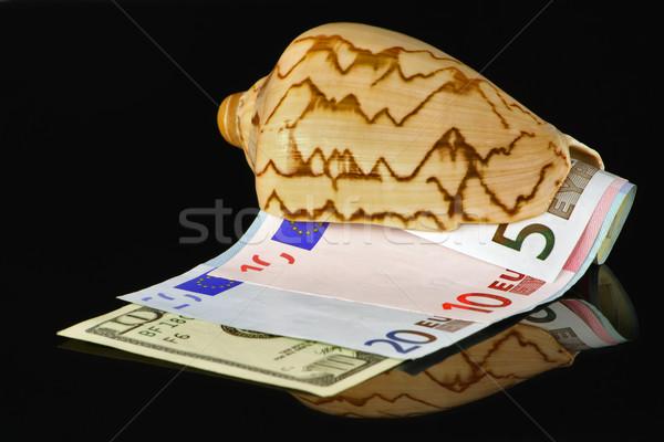 Marine bowl with money Stock photo © vavlt