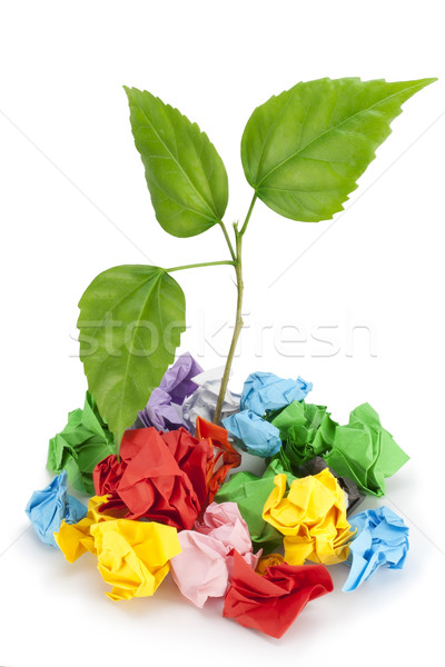 Sprout and garbage dump, force of the life concept Stock photo © vavlt