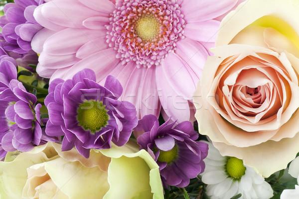 Flowers for the girlfriend Stock photo © vavlt