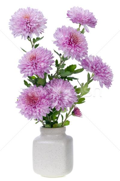 Stockfoto: Boeket · klein · roze · bloemen · aantal