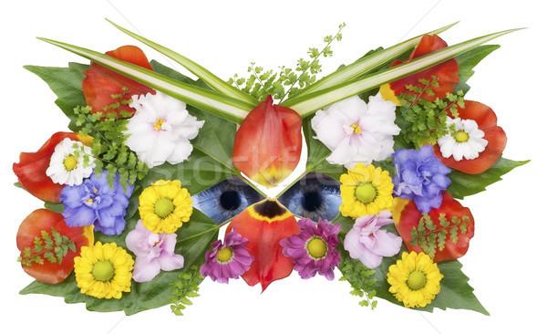 Maske gözler kır çiçeği bahar kolaj yalıtılmış Stok fotoğraf © vavlt