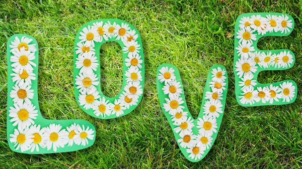 Sevmek yaz kelime yeşil ot çim Stok fotoğraf © vavlt