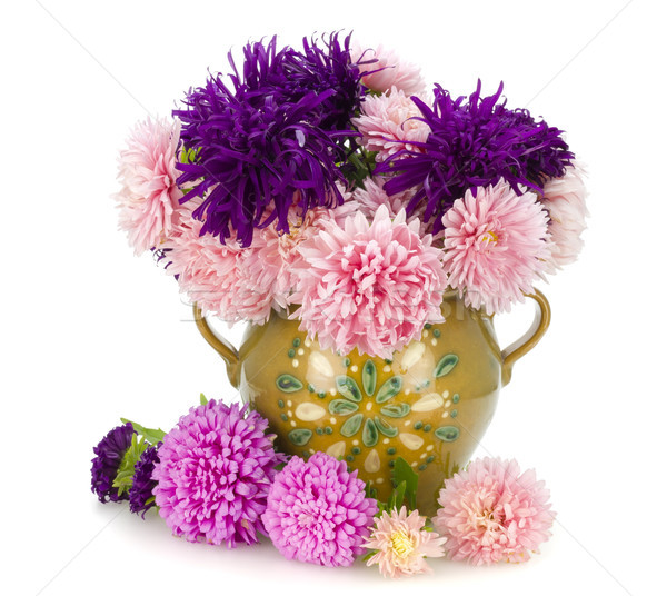 Pink and violet autumn asters in jug Stock photo © vavlt