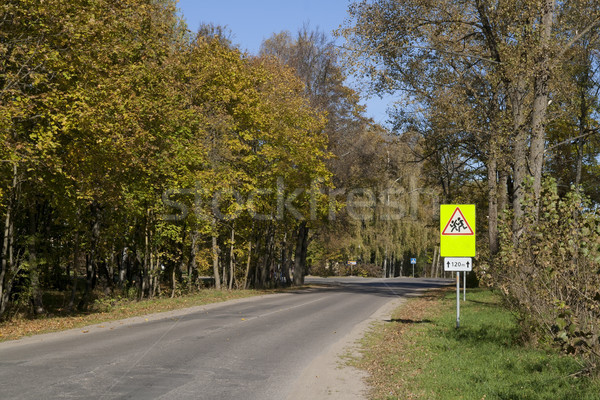 Road and traffic sign 'it is careful - children!' Stock photo © vavlt