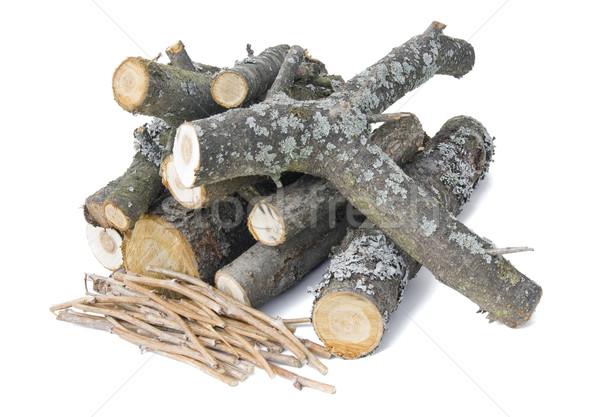 Tűz fa kicsi barbecue természet sötét Stock fotó © vavlt