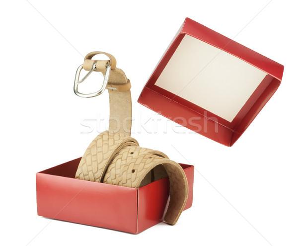 öv ki doboz kígyó citromsárga bőr Stock fotó © vavlt